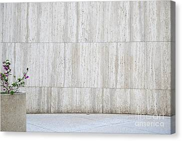 Concrete Planter With Flowers In Front Of Marble Wall Canvas Print by Inti St. Clair