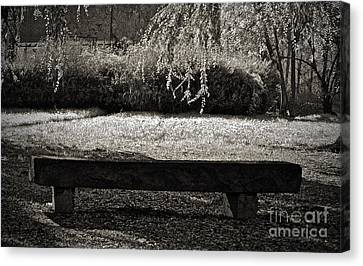 Concurrence Of Causes Canvas Print by Gwyn Newcombe