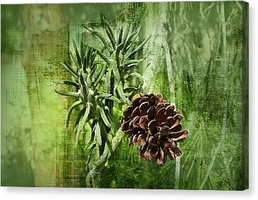 Conifer Cone Canvas Print by Michael Greenaway