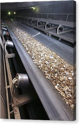 Conveyor Belt At Cement Works Canvas Print by Ria Novosti