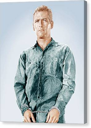 Cool Hand Luke, Paul Newman, 1967 Canvas Print by Everett