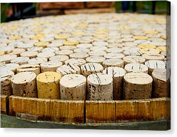 Corks Canvas Print by Calvin Wray