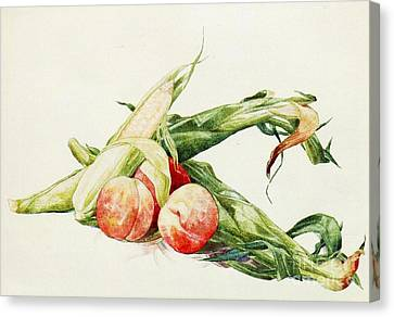 Corn And Peaches Canvas Print by Pg Reproductions