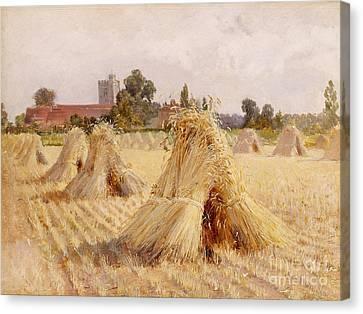 Corn Stooks By Bray Church Canvas Print by Heywood Hardy