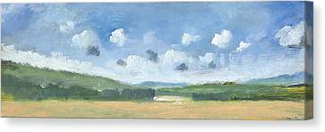 Cornfields Near Brading Canvas Print by Alan Daysh