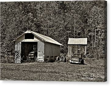 Country Life Sepia Canvas Print by Steve Harrington