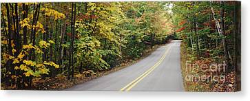 Country Road Through Maine Forest Canvas Print by Jeremy Woodhouse