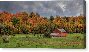 Country Time Canvas Print by Lori Deiter