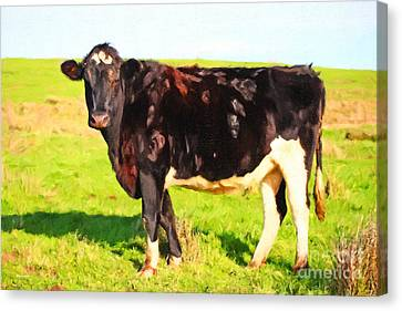 Cow Profile . Painterly Canvas Print by Wingsdomain Art and Photography
