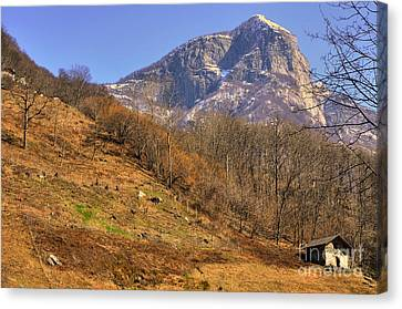 Cowhouse And Snow-capped Mountain Canvas Print by Mats Silvan