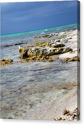 Cozumel Before Thunder Canvas Print by Danielle  Parent