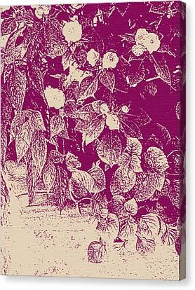 Cranberry Cascade Canvas Print by Katharine Birkett