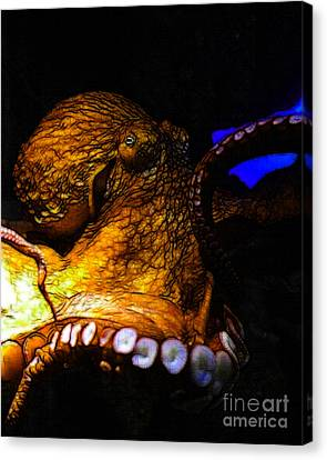 Creatures Of The Deep - The Octopus - V6 - Gold Canvas Print by Wingsdomain Art and Photography