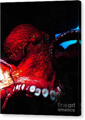 Creatures Of The Deep - The Octopus - V6 - Red Canvas Print by Wingsdomain Art and Photography