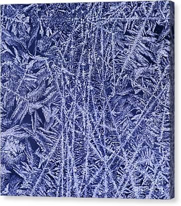 Crystal 2 Canvas Print by Sabine Jacobs