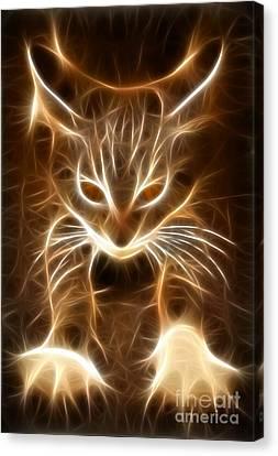 Cute Little Kitten Canvas Print by Pamela Johnson