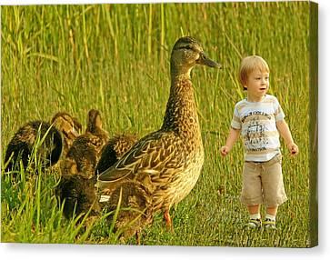 Cute Tiny Boy Playing With Ducks Canvas Print by Jaroslaw Grudzinski