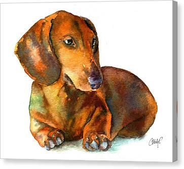 Dachshund Puppy Canvas Print by Christy  Freeman