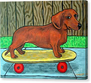 Dachshund Skateboarding Canvas Print by Jay  Schmetz