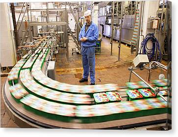 Dairy Factory Production Line Canvas Print by Ria Novosti