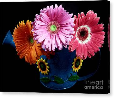 Daisy Can Canvas Print by John Rizzuto