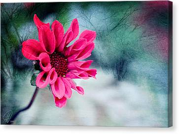 Dancing In The Dark Canvas Print by Margaret Hormann Bfa