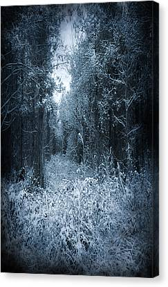 Dark Place Canvas Print by Svetlana Sewell