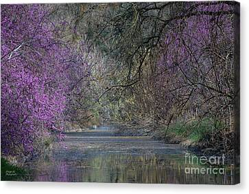 Davis Arboretum Creek Canvas Print by Diego Re