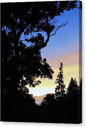 Day's End Canvas Print by Todd Sherlock