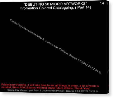 Debuting 50 Micro Artworks Part 14 Canvas Print by Phillip H George