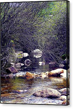 Deep In The Forest Canvas Print by Guadalupe Nicole Barrionuevo