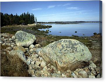 Deer Isle Granite Shoreline Canvas Print by Thomas R Fletcher