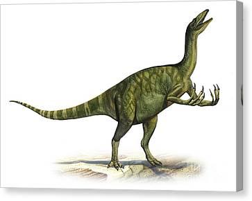 Deinocheirus Mirificus, A Prehistoric Canvas Print by Sergey Krasovskiy