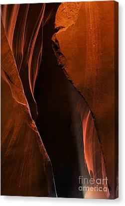 Desert Beam Canvas Print by Mike  Dawson