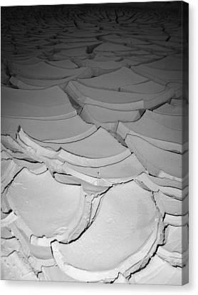 Desert Lake Canvas Print by Naxart Studio