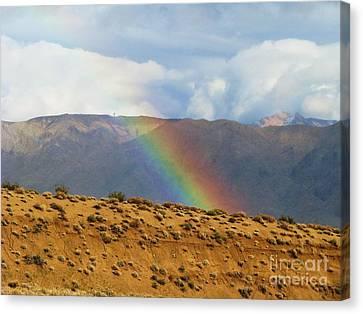 Desert Rainbow Canvas Print by Michele Penner