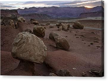 Desert Sunrise Canvas Print by Dave Dilli