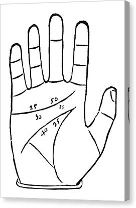 Diagram Used In Palmistry, 16th Century Canvas Print by Middle Temple Library