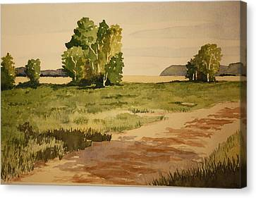 Dirt Road 1 Canvas Print by Jeff Lucas