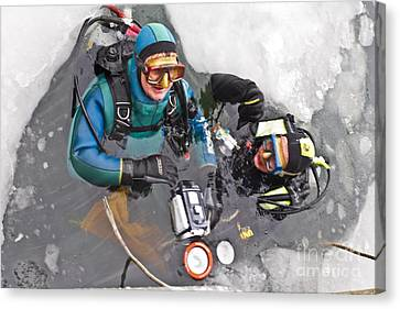 Diving In The Ice Canvas Print by Heiko Koehrer-Wagner