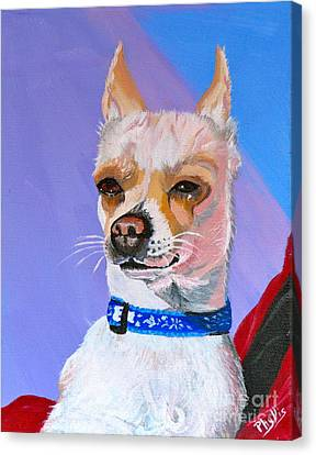 Doggie Know It All Canvas Print by Phyllis Kaltenbach