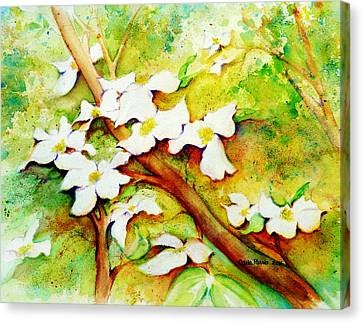 Dogwood Flowers Canvas Print by Carla Parris