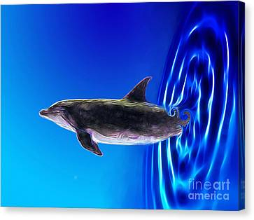 Dolphin Zoom Canvas Print by Methune Hively