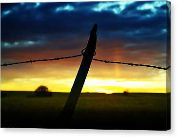 Don't Fence Me In Canvas Print by Ellen Heaverlo