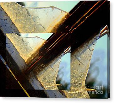 Double Jointed  Canvas Print by Tammy Cantrell