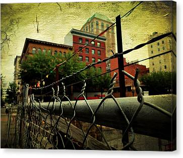 Down The Fence Canvas Print by Cathie Tyler