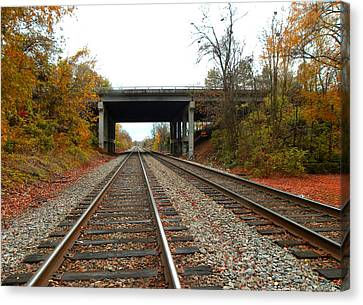 Down The Lines Canvas Print by Sandi OReilly