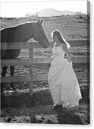 Dress 40 Canvas Print by Betsy Knapp