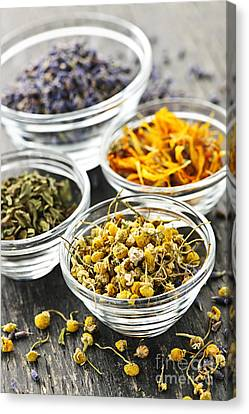 Dried Medicinal Herbs Canvas Print by Elena Elisseeva
