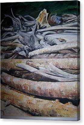 Driftwood Canvas Print by Joyce Reid